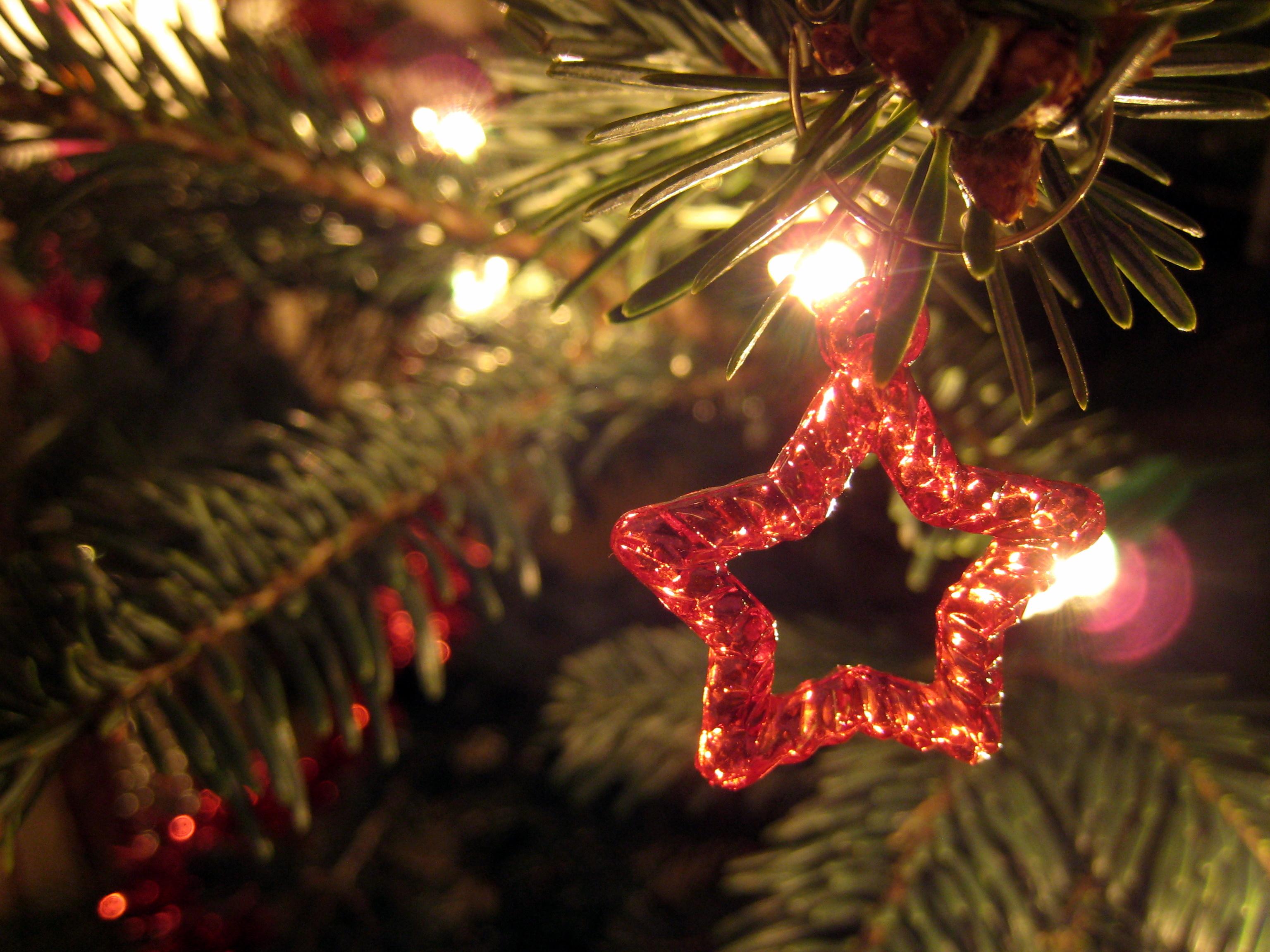 Offrez un Road Trip pour Noël !
