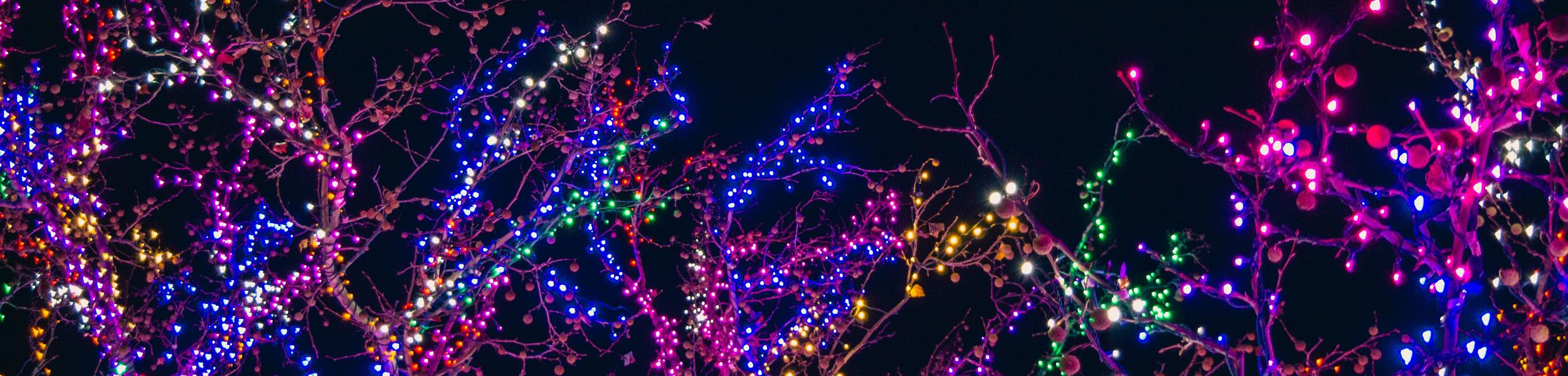 Illuminations de Noël en Finistère : notre séleciton