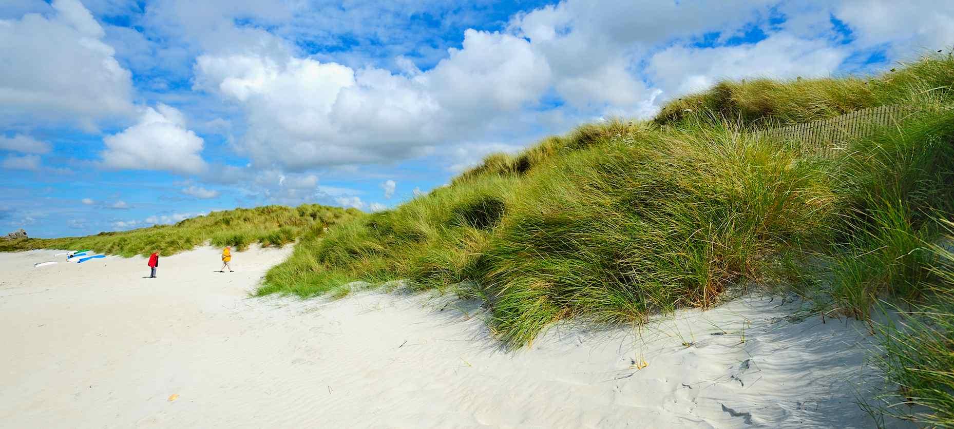 Les dunes, bords de mer en Finistère