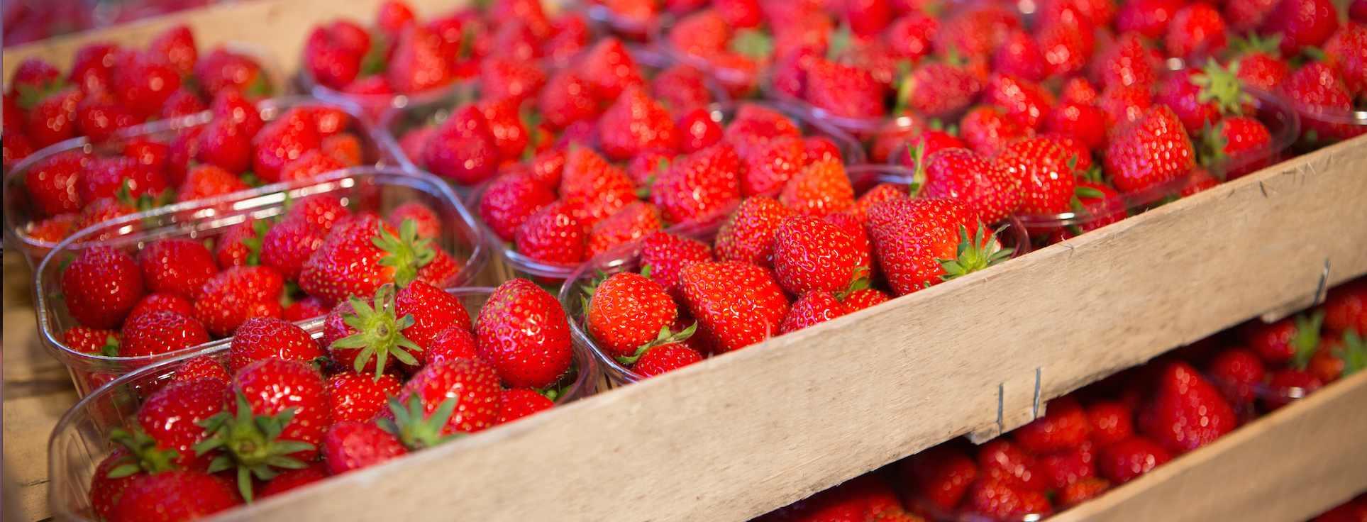 Parfait aux fraises de Plougastel