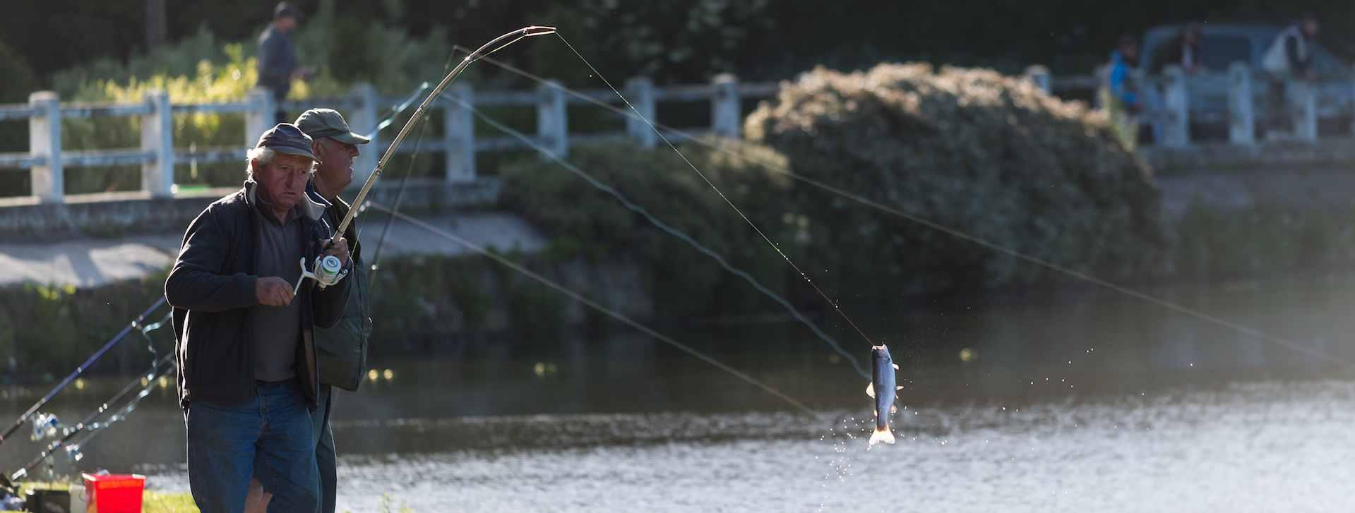 Les circuits pêche en Finistère