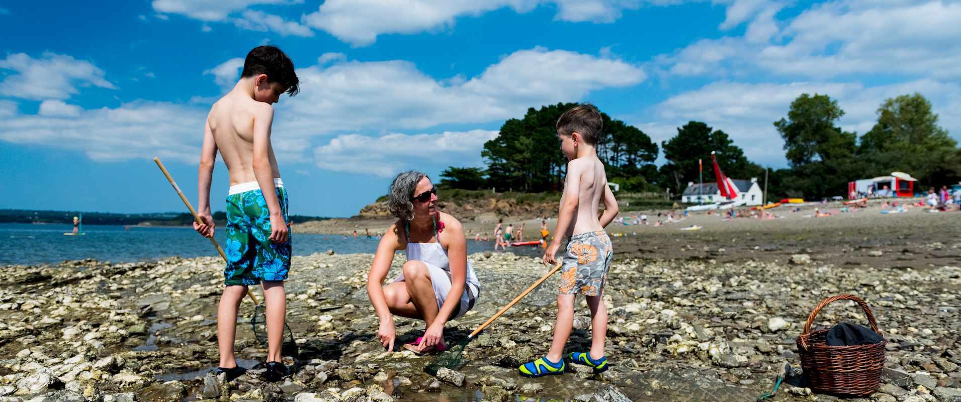 Pêche à pied en Finistère