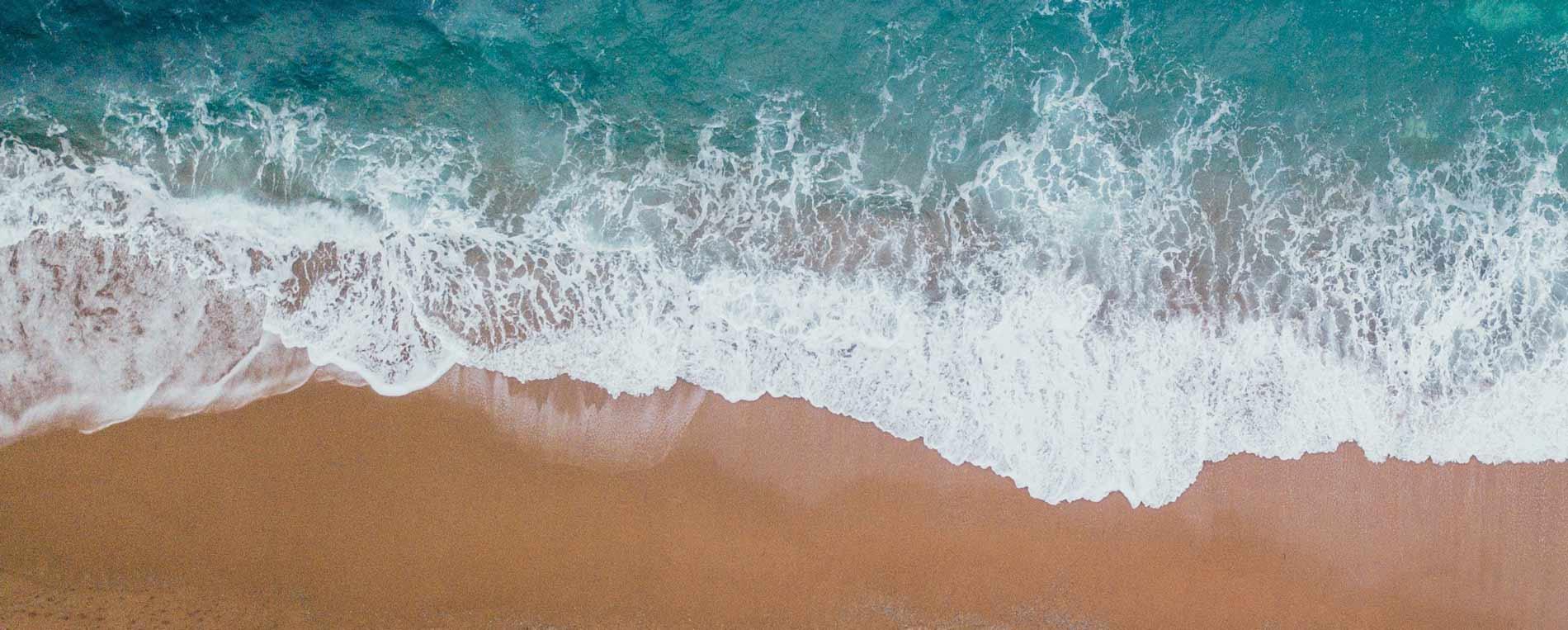 Protéger les océans, une priorité en Finistère
