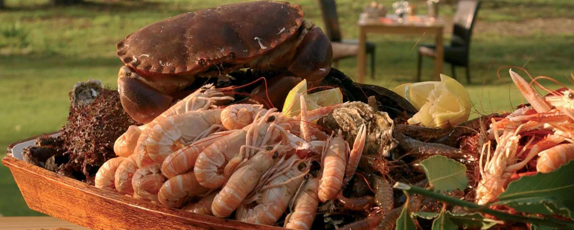 Un plateau de fruits de mer pour épater les amis