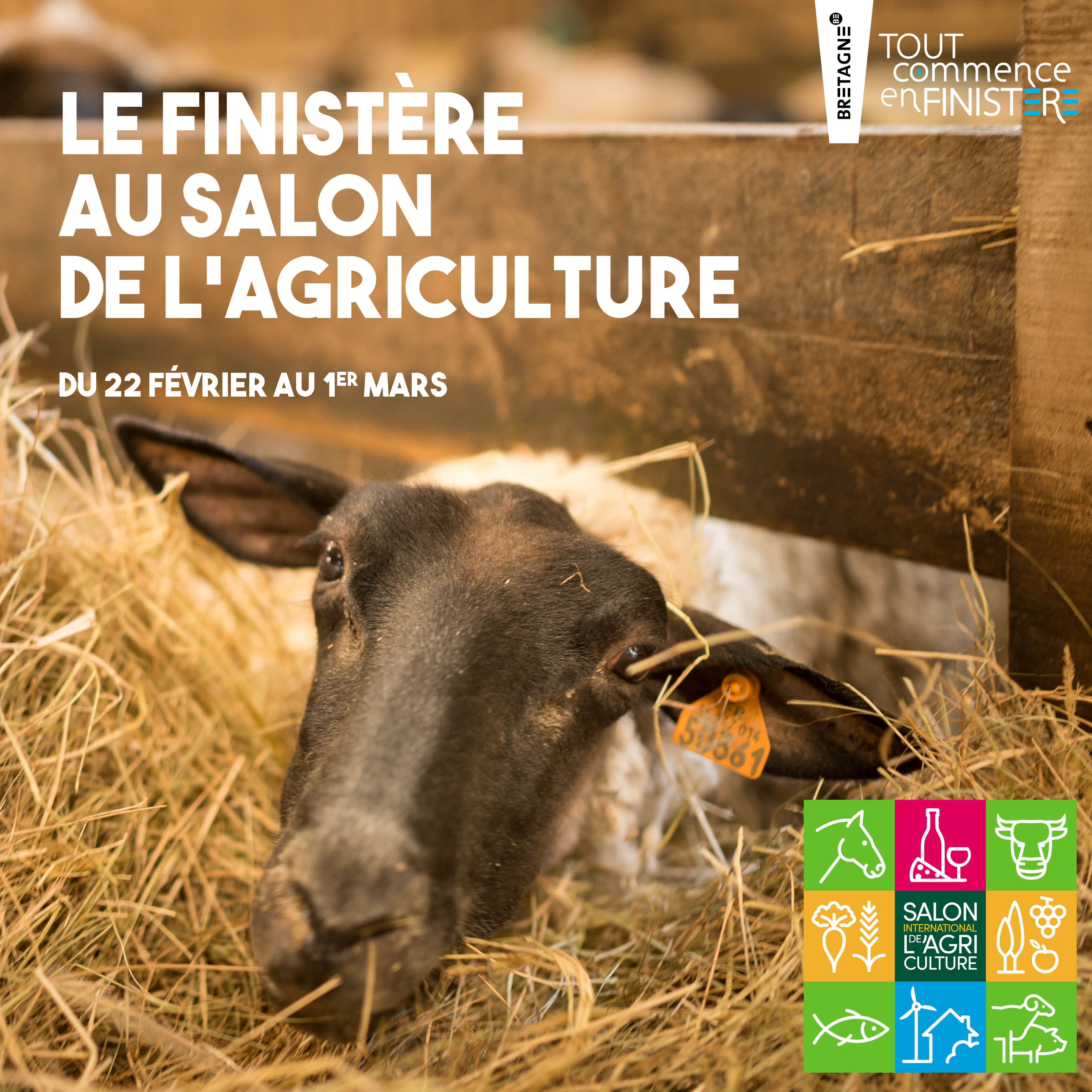 Le Finistère au Salon international de l'agriculture