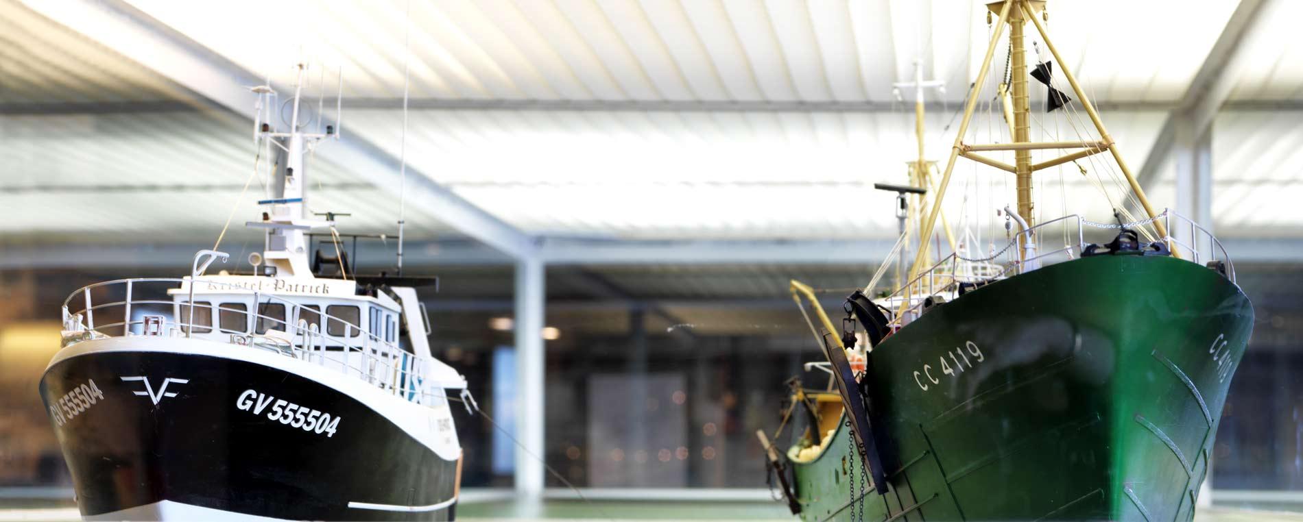 Un œil neuf sur le musée de la Pêche de Concarneau