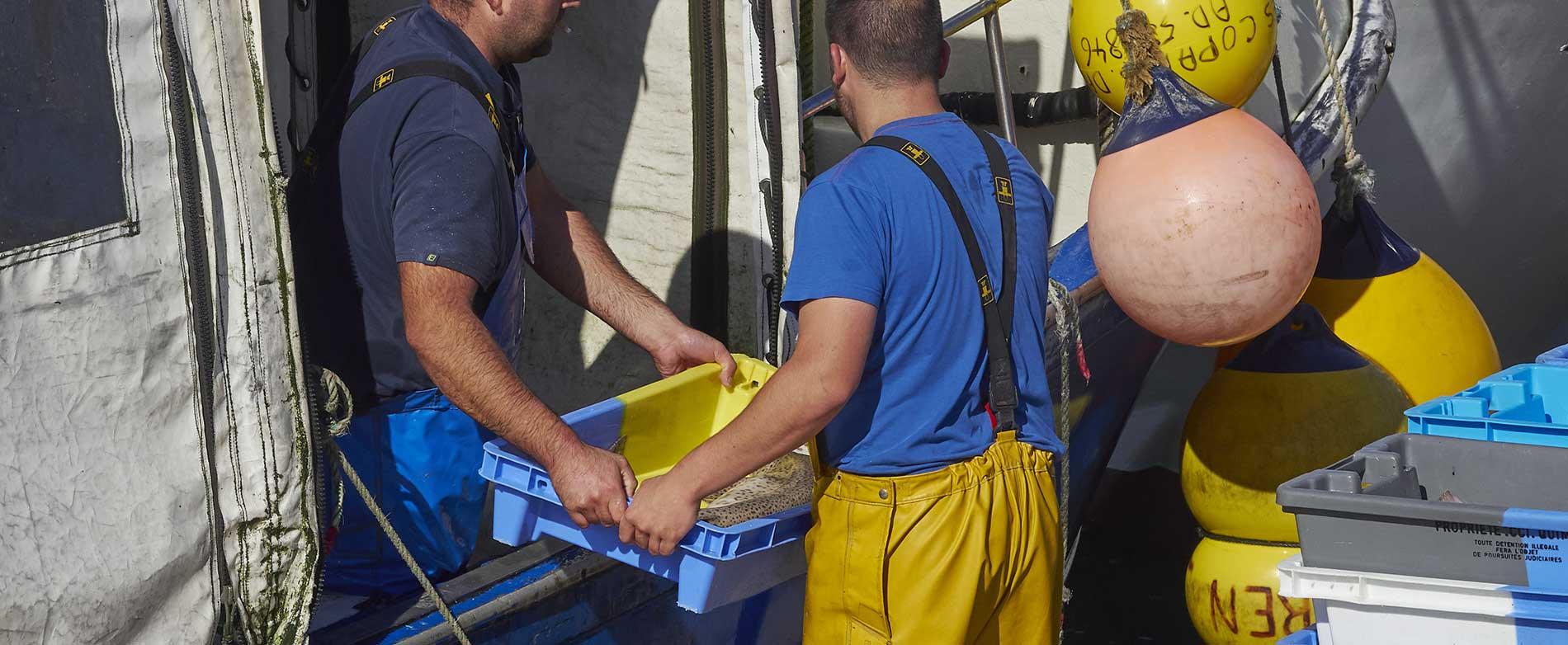 Acheter poissons et fruits de mer pendant le confinement, c'est possible !