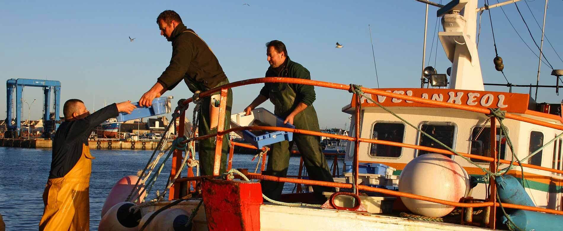 Formation dans la filière pêche en Finistère : de A à Z !