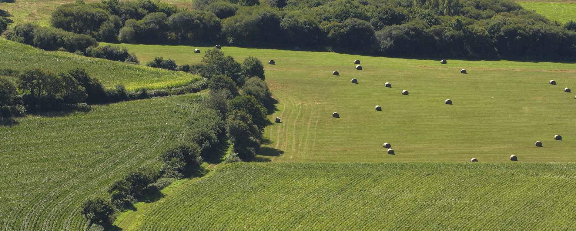 Nouvelles techniques agricoles : des exemples en Finistère