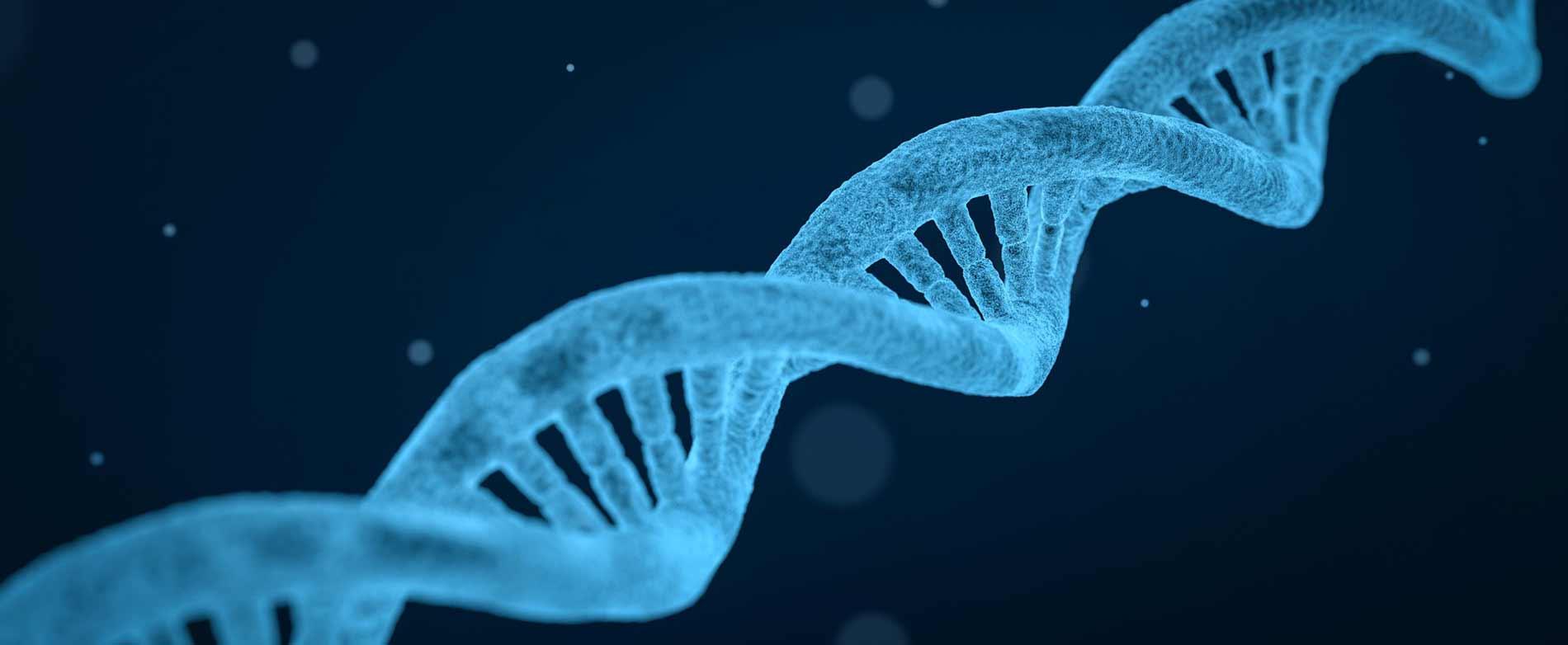 L'ADN de la marque Tout commence en Finistère